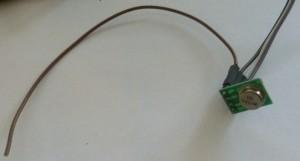 P1050730 (Medium)
