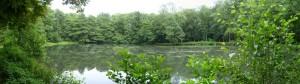 Teich beim Wasserschloss Raesfeld